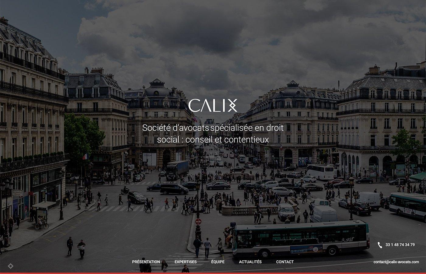 Écran d'accueil du site internet