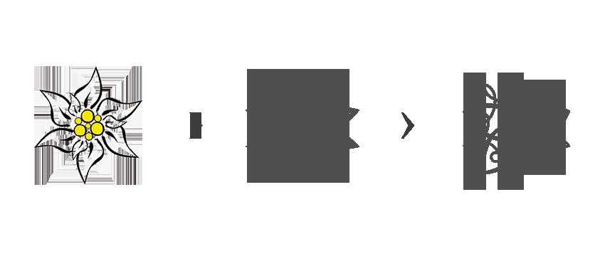 Démarche de création du logo